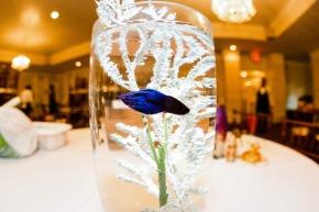MMP_wedding-133
